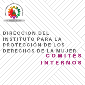 Direccion Instituto para protección
