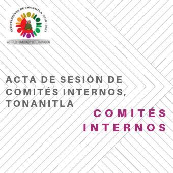ACTA DE SESION DE COMITES INTERNOS